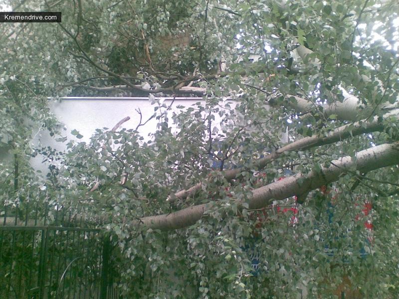 дерево погнуло забор и немного повредило крышу пристройки